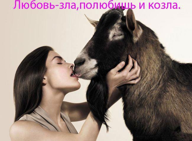Обои девушка целуется с козлом (реклама против курения) .