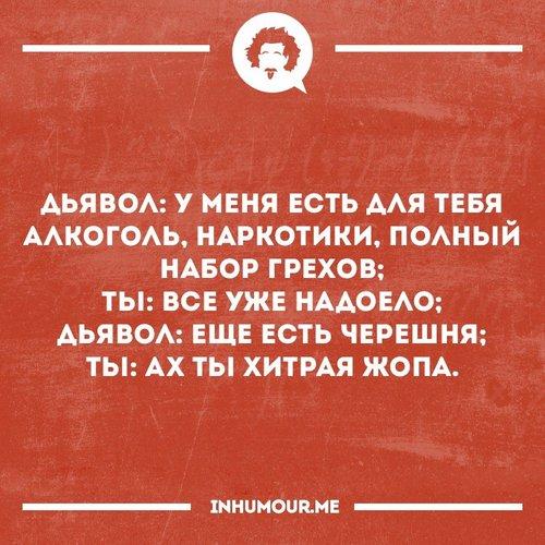 http://ex.by/uploads/posts/2016-07/1467763518_prikolnye-frazy-7.jpg