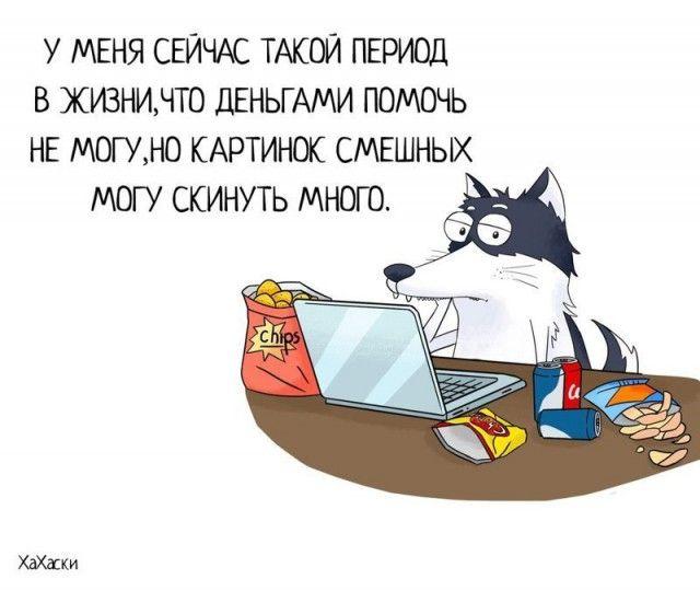 24 забавных комикса про хаски Карла